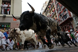 Brave tourists and locals participate in the Running of the Bulls at the Festival of San Fermin, Pamplona, Spain