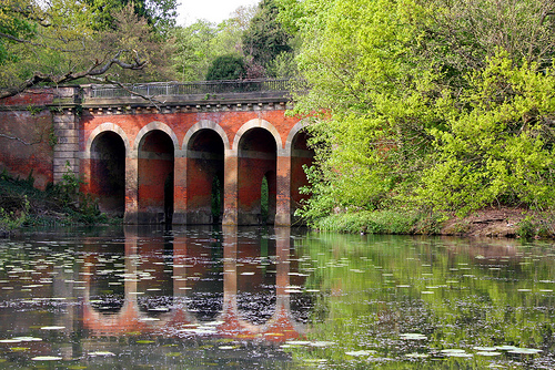 A Viaduct pond in Hampstead Heath