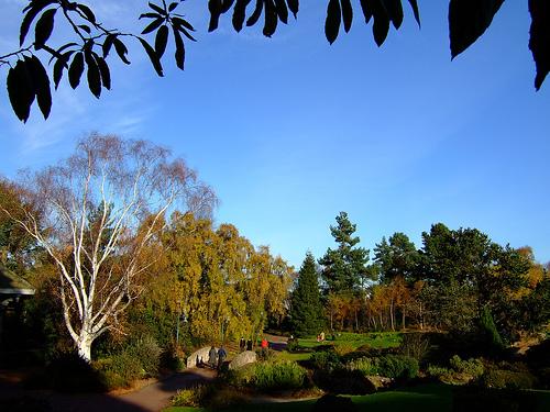 Edinburgh's Royal Botanical Gardens